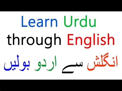 Urdu Vocabulary For Essay Writing